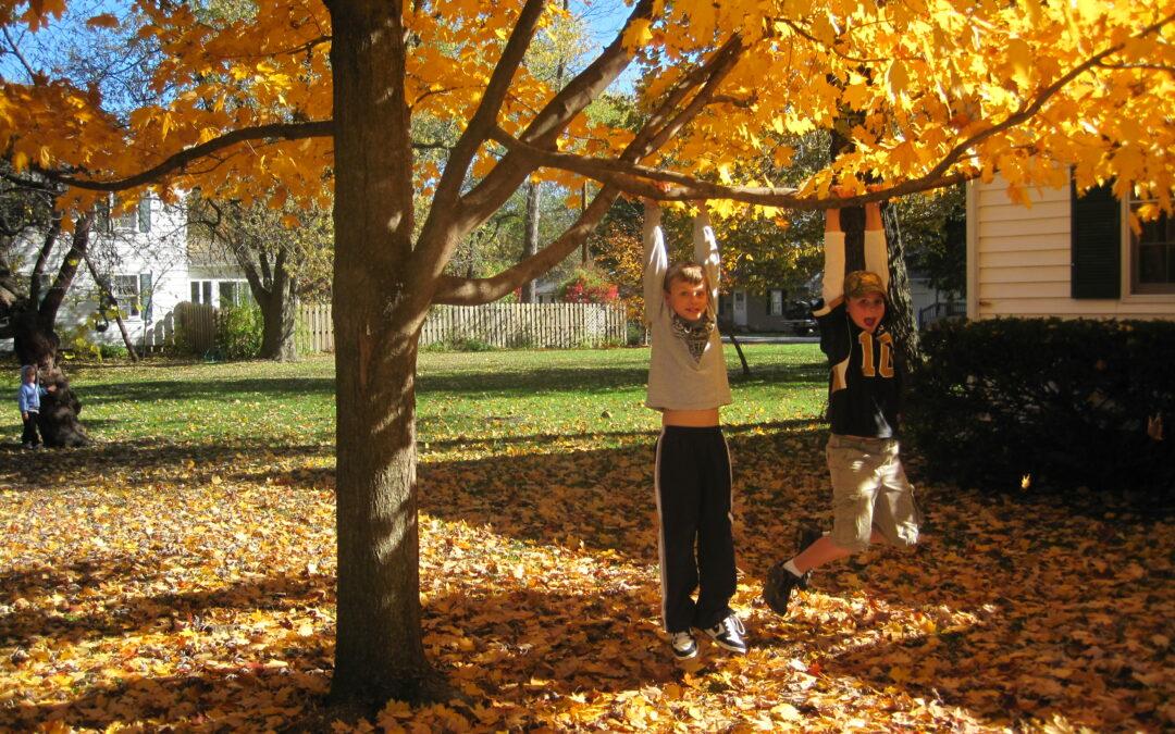 Autumn Makes me Homesick
